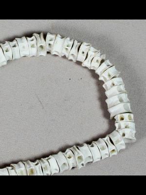 165 perles vertèbres de poisson