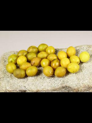 24  perles en pâte de verre